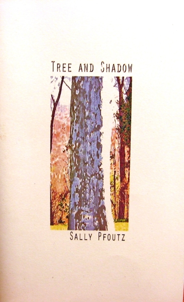 pfoutz tree and shadow poetry